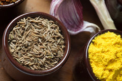 Especias e hierbas en tazones de fuente de cerámica Ingredientes del alimento y de la cocina Foto de archivo libre de regalías