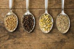 Especias e ingredientes de la infusión de hierbas en las cucharas Fotografía de archivo
