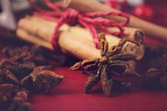 Especias e ingredientes festivos de la Navidad Foto de archivo libre de regalías