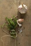 Especias (el ajo, el tomillo, ve la sal, los granos de pimienta negros)  Foto de archivo libre de regalías