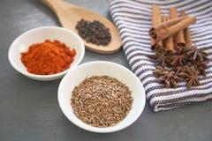 Especias: el polvo del chillie, el palillo de canela, la pimienta negra, las semillas de comino y el clavo florecen Imágenes de archivo libres de regalías