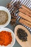 Especias: el polvo del chillie, el palillo de canela, la pimienta negra, las semillas de comino y el clavo florecen Foto de archivo libre de regalías