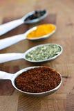 Especias en cucharas dosificadoras Foto de archivo libre de regalías