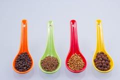 Especias en las cucharas coloreadas foto de archivo libre de regalías
