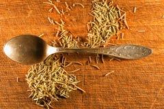 Especias; hierbas secadas romero Foto de archivo libre de regalías