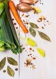 Especias, hierbas y verduras para la sopa o el caldo Imágenes de archivo libres de regalías
