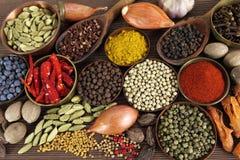 Especias indias Imagen de archivo libre de regalías