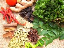 Especias indias del curry Imagenes de archivo
