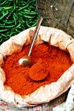 Especias indias frescas Imagen de archivo libre de regalías