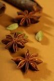 Especias, palillos de cinamomo, cardamomo, anís de estrella Imágenes de archivo libres de regalías