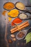 Especias paprika, cúrcuma, masala, canela, coriandro, nuez moscada moscada, anís de estrella, hoja de laurel, clavos Imagen de archivo