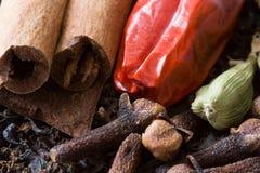 Especias para el té de Chai Foto de archivo libre de regalías