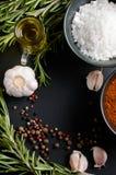 Especias, romero, pimienta inglesa, ajo, aceite y sal Fotos de archivo