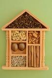 Especias srilanquesas en caja decorativa Foto de archivo libre de regalías