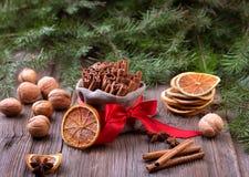 Especias tradicionales de la Navidad Foto de archivo
