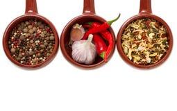 Especias y ajo en tazones de fuente de cerámica. Fotografía de archivo