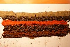 Especias y café coloridos Fotos de archivo libres de regalías