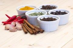 Especias y condimentaciones Fotografía de archivo libre de regalías