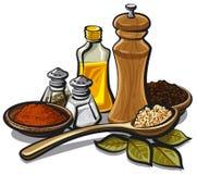 Especias y condimentaciones Imagen de archivo libre de regalías
