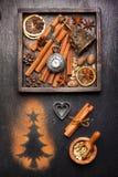 Especias y decoración de la Navidad Fotografía de archivo