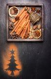 Especias y decoración de la Navidad con el espacio para el texto Foto de archivo libre de regalías