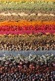 Especias y fondo de las hierbas Diversos condimentos se dispersan en color de las rayas fotos de archivo