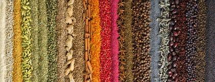 Especias y fondo indios de las hierbas condimento colorido, visión superior imagen de archivo libre de regalías