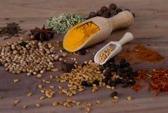 Especias y semillas Foto de archivo libre de regalías