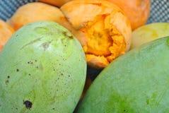 Especie del mango Imágenes de archivo libres de regalías