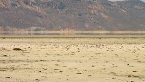 Espejismo en el gran desierto de la sal, Irán metrajes