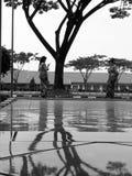 Espejo blanco negro de n Foto de archivo