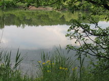 Espejo de la charca Imagenes de archivo