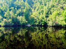 Espejo del agua Fotografía de archivo