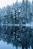 Espejo del invierno Foto de archivo libre de regalías