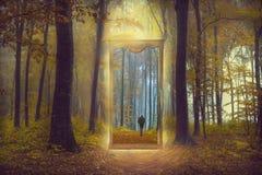 Espejo a través de otro mundo en un bosque de niebla Foto de archivo