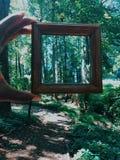 espejos foto de archivo