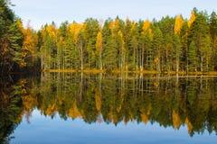 Espelhando o lago da floresta Fotos de Stock