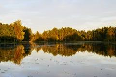 Espelho da água Imagens de Stock