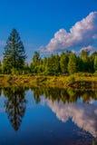 Espelho da água Fotografia de Stock