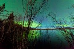 Espelho da superfície do lago dos salgueiros da costa da aurora boreal Foto de Stock Royalty Free