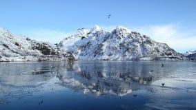 Espelhos no fjord congelado Fotos de Stock