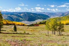 Espen entlang der Junggeselle-Schleife, Creede Colorado Stockfotos
