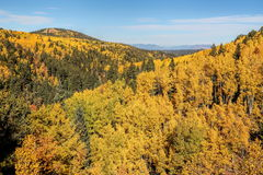 Espen und Berge Lizenzfreies Stockfoto