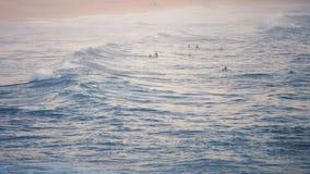 Espera dos surfistas Fotos de Stock Royalty Free