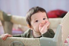 Esperando os primeiros dentes, foco macio Fotografia de Stock Royalty Free