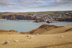 Espere la ensenada, Devon, Inglaterra Imagen de archivo