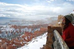Esperienza del canyon di Bryce Fotografie Stock