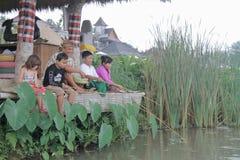 Esperienze agricole di permacultura di attività a Desa Visesa Fotografia Stock Libera da Diritti
