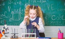 Esperimento astuto della scuola di comportamento dello studente della ragazza Liquidi chimici di studio dell'allievo della scuola immagini stock libere da diritti
