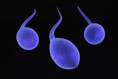 esperma 3d Imagen de archivo libre de regalías